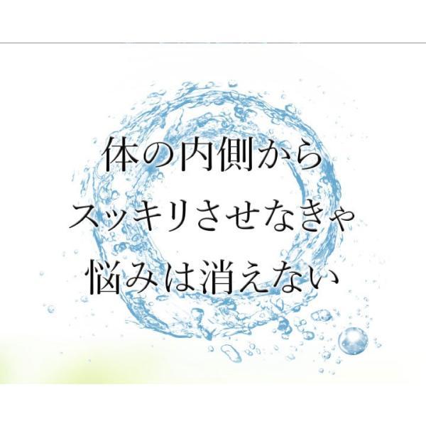 爽臭サプリ 口臭 体臭 加齢臭対策に 最近話題の 消臭サプリはみやびの爽臭サプリ 2袋セット|miyabi-store|07