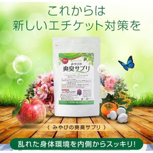 爽臭サプリ 口臭 体臭 加齢臭対策に 最近話題の 消臭サプリはみやびの爽臭サプリ 2袋セット|miyabi-store|08