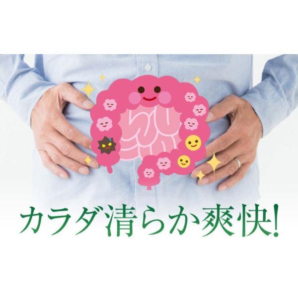 爽臭サプリ 口臭 体臭 加齢臭対策に 最近話題の 消臭サプリはみやびの爽臭サプリ 2袋セット|miyabi-store|09
