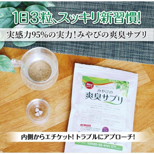 爽臭サプリ 口臭 体臭 加齢臭対策に 最近話題の 消臭サプリはみやびの爽臭サプリ 2袋セット|miyabi-store|10
