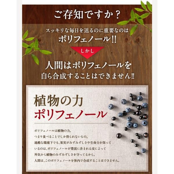 ビルベリープレミアムα ルテイン&ビタミンA配合 3袋セット メール便なら送料324円 目のサプリメント 栄養機能食品|miyabi-store|11