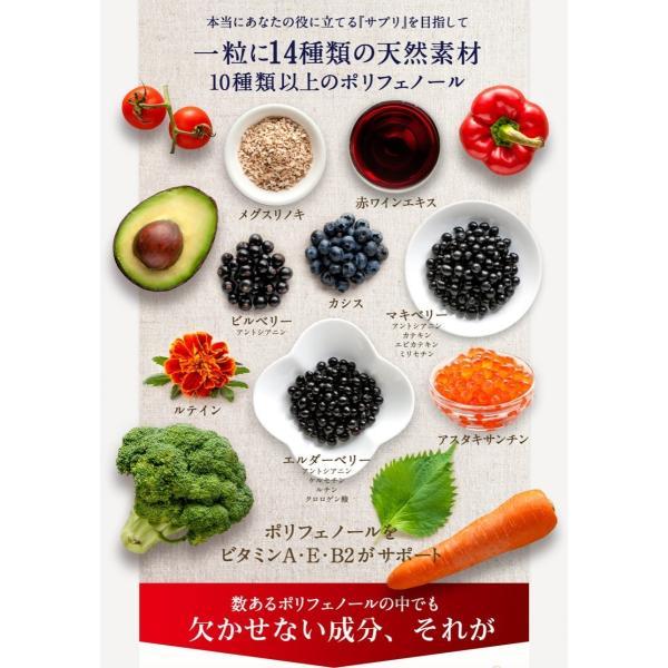 ビルベリープレミアムα ルテイン&ビタミンA配合 3袋セット メール便なら送料324円 目のサプリメント 栄養機能食品|miyabi-store|13