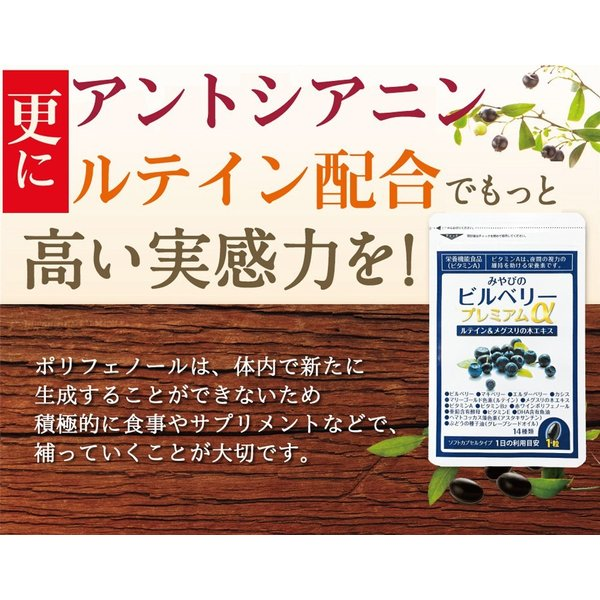 ビルベリープレミアムα ルテイン&ビタミンA配合 3袋セット メール便なら送料324円 目のサプリメント 栄養機能食品|miyabi-store|14