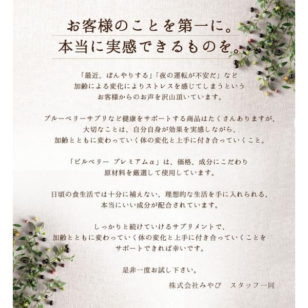 ビルベリープレミアムα ルテイン&ビタミンA配合 3袋セット メール便なら送料324円 目のサプリメント 栄養機能食品|miyabi-store|18