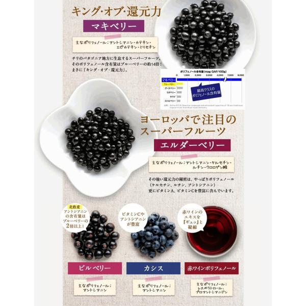 ビルベリープレミアムα ルテイン&ビタミンA配合 3袋セット メール便なら送料324円 目のサプリメント 栄養機能食品|miyabi-store|05