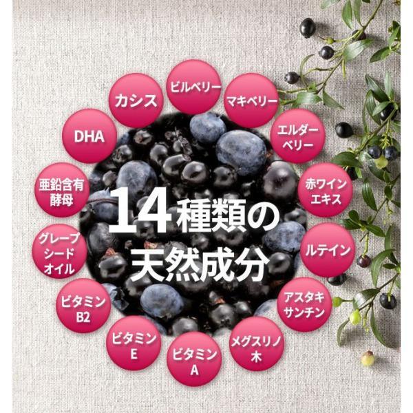 ビルベリープレミアムα ルテイン&ビタミンA配合 3袋セット メール便なら送料324円 目のサプリメント 栄養機能食品|miyabi-store|09