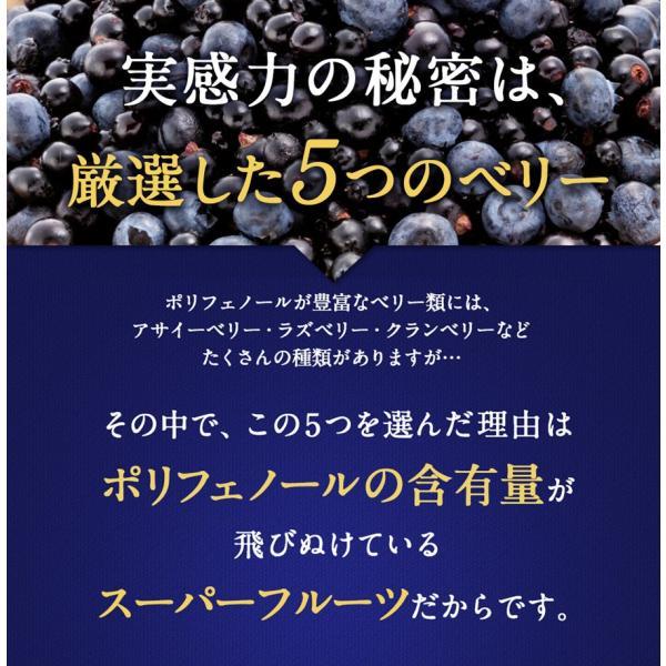 ビルベリープレミアムα ルテイン&ビタミンA配合 メール便なら送料324円 サプリメント 栄養機能食品|miyabi-store|03