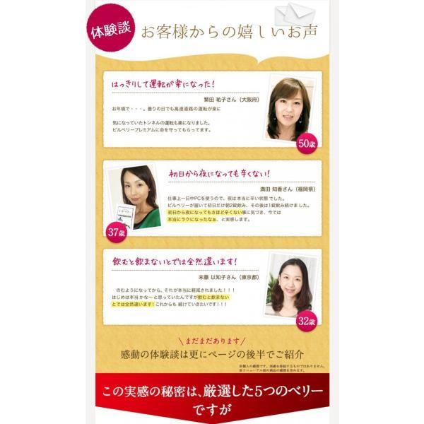 ビルベリープレミアムα ルテイン&ビタミンA配合 メール便なら送料324円 サプリメント 栄養機能食品|miyabi-store|05
