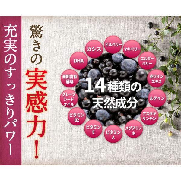 ビルベリープレミアムα ルテイン&ビタミンA配合 メール便なら送料324円 サプリメント 栄養機能食品|miyabi-store|08