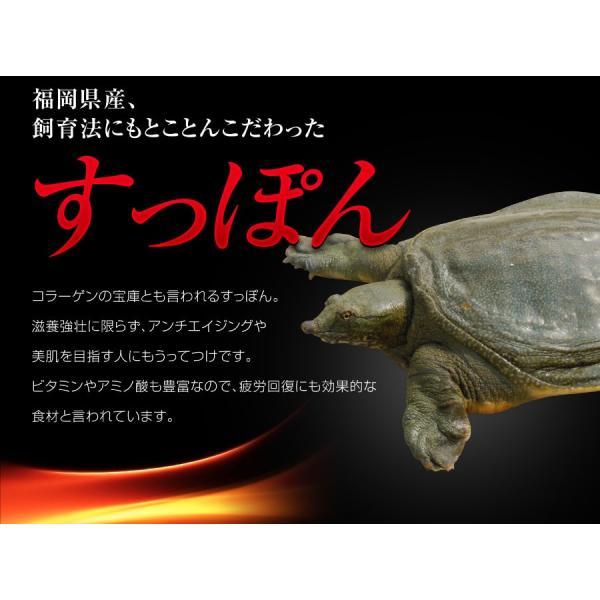 みやびの すっぽん プラセンタ さらに-sarani-|miyabi-store|07