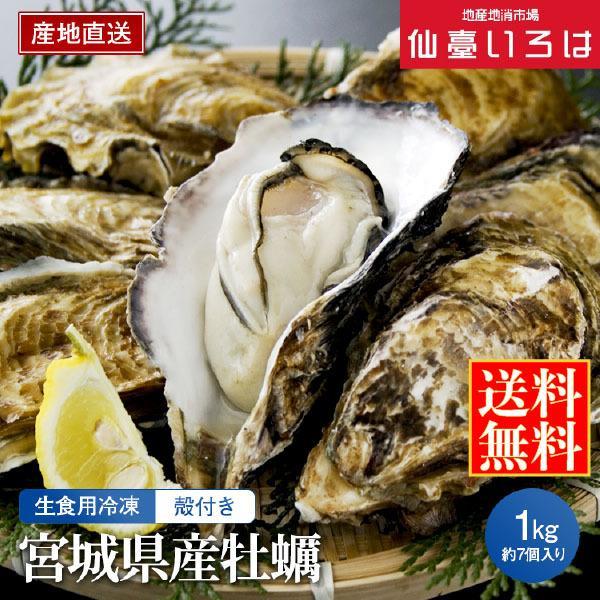 冷凍 殻付き牡蠣 1kg 宮城三陸産 生食用 宮城 アキコーポレーション 剥きたて カキ お取り寄せ