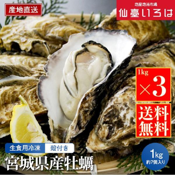 冷凍 殻付き牡蠣 3kg 宮城三陸産 生食用 宮城 アキコーポレーション 剥きたて カキ お取り寄せ