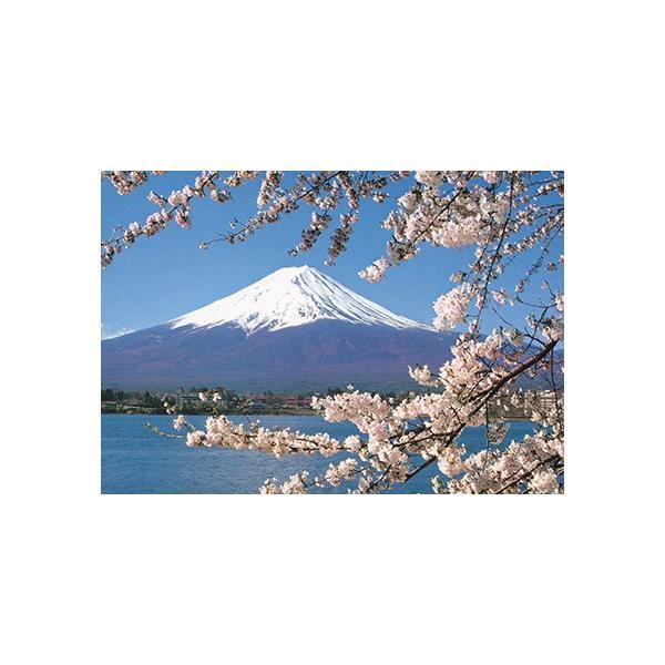 旅する日本【富士山と桜】絵はがき ポストカード miyakobiyori