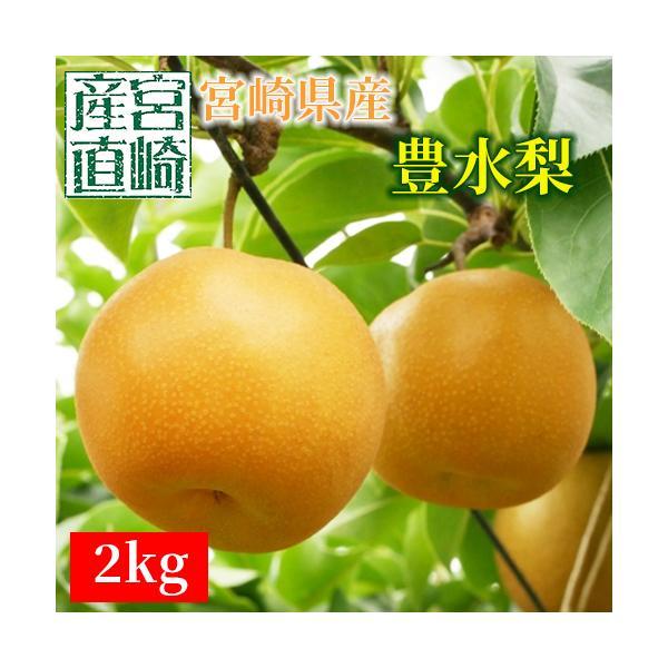 梨 なし 2Kg 宮崎県産 平均糖度12度以上(8月下旬〜10月下旬)送料無料 化粧箱 産地直送 新鮮 9月下旬より順次発送