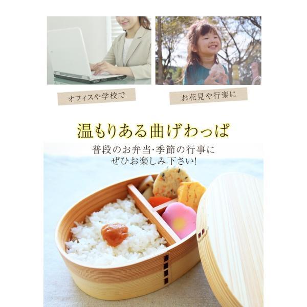 曲げわっぱ 高背小判弁当箱 白木 送料無料|miyoshi-ya|05