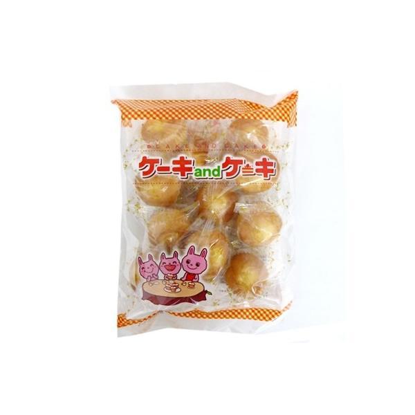 丸三玉木屋 ケーキandケーキ 個装12個×1袋 半生菓子 焼き菓子