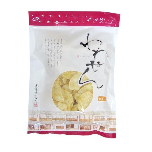 金澤兼六製菓 われせん カレー 200g 割れせんべい 国産米100%
