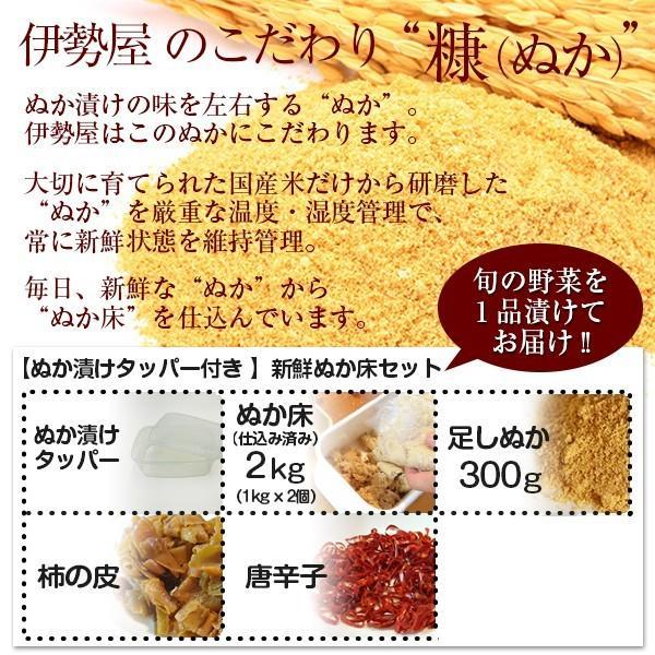 ぬか床セット 初心者向けぬか漬けしおり 旬ぬか漬け1品 足しぬか300g 旨味の素 タッパー付き|mizunasuzukehannbai|04