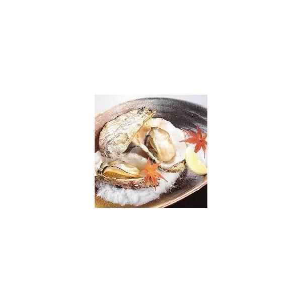 殻付きカキ 殻付牡蠣 カキ 業務用 生鮮 加熱用 宮城県産 三陸産 1000K入り|mjcr1yxgb|02