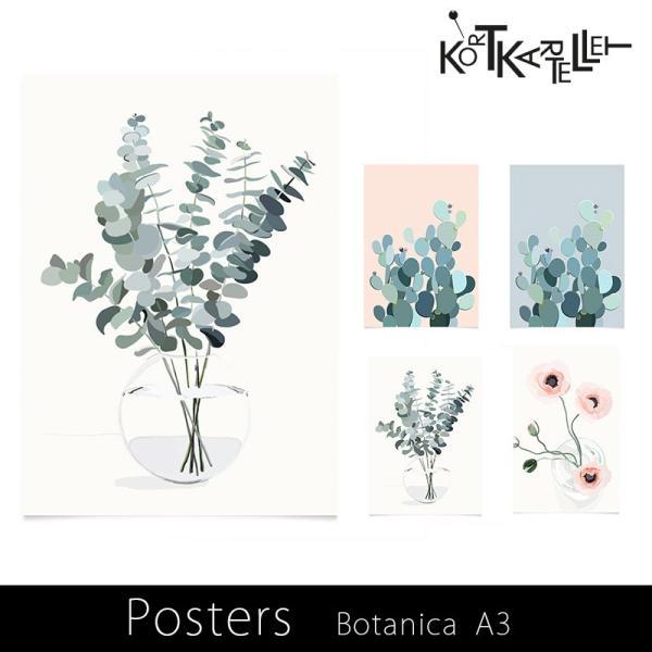 kortkartellet POSTERS Botanica ポスターA3