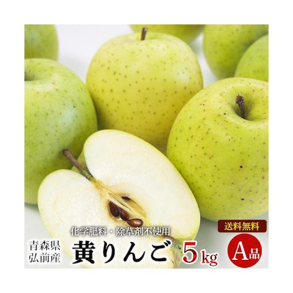 青森県産 自然農法特別栽培 黄りんご A品 5kg【送料無料】
