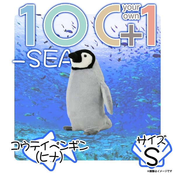 ぬいぐるみ ペンギン コウテイペンギン ヒナ エンペラーペンギン HA003 0228 100+1 SEA 海に暮らす生き物たち 魚 子供 Sサイズ 太洋産業貿易 宅配便配送