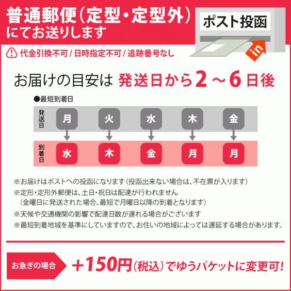 iPod nano 第6世代 (2枚入) ノングレア液晶保護フィルム 反射防止 防指紋 ASDEC アスデック NF-IPD01|mobilefilm|03