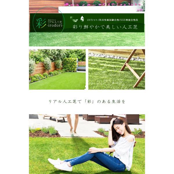 防炎リアル人工芝 [U字ピン20本入] 1m×10m 芝丈36mm [彩-IRODORI-] UV ロールタイプ人工芝 綺麗 高密度 高級 芝|mobimax2|18