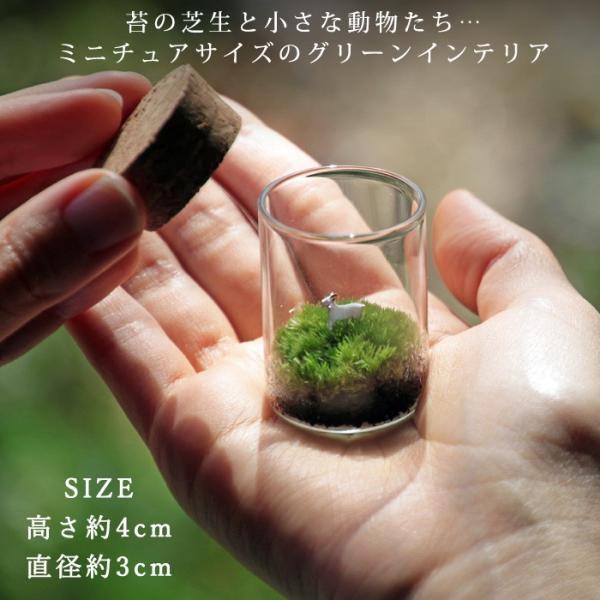 苔テラリウム 動物のいる草原 植物 母の日 ギフト プレゼント レビューでおまけ 定形外OK mofumofumoss 02
