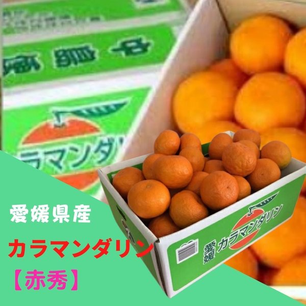 みかん カラマンダリン 【赤秀】 M~Lサイズ(約5kg) JAえひめ中央 ふるさと物産品
