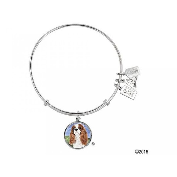 アクセサリー Wind and Fire Pet Collection Expandable Bangle with Cavalier King Charles Spaniel Photo Charm Rhodium Plated Brass 並行輸入品[monas market/Yahooショッピング]