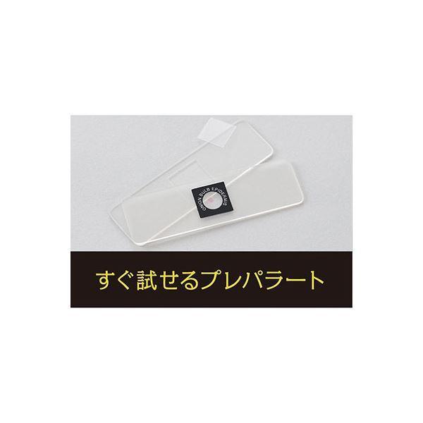 ハンディ顕微鏡DX イエロー RXT300Y〔代引不可〕
