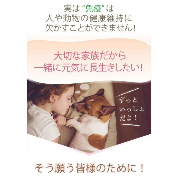 老犬 老猫 シニア用 サプリメント 健康を維持し 免疫力 肝臓 皮膚の健康を保つ。 (別途送料で)あすつく可<コルディmini>|monolith-net|04