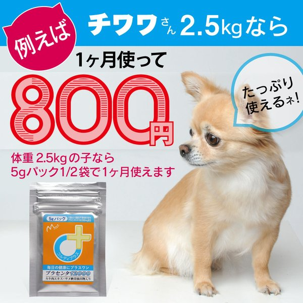 【ヒューマングレード】犬猫の健康を維持し、肝臓と皮膚を守るサプリ (別途送料で)あすつく可<プラセンタ12000(5gパック)>|monolith-net|09