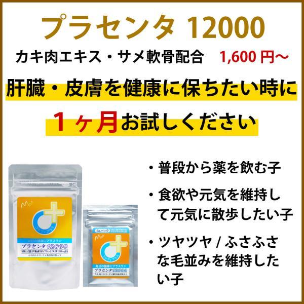【ヒューマングレード】犬猫の健康を維持し、肝臓と皮膚を守るサプリ (別途送料で)あすつく可<プラセンタ12000(5gパック)>|monolith-net|03