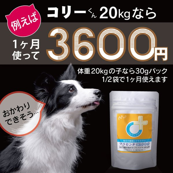 【ヒューマングレード】犬猫の健康を維持し、肝臓と皮膚を守るサプリ (別途送料で)あすつく可<プラセンタ12000(30gパック)>|monolith-net|06