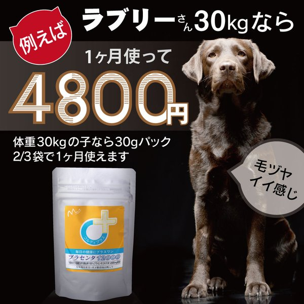 【ヒューマングレード】犬猫の健康を維持し、肝臓と皮膚を守るサプリ (別途送料で)あすつく可<プラセンタ12000(30gパック)>|monolith-net|07