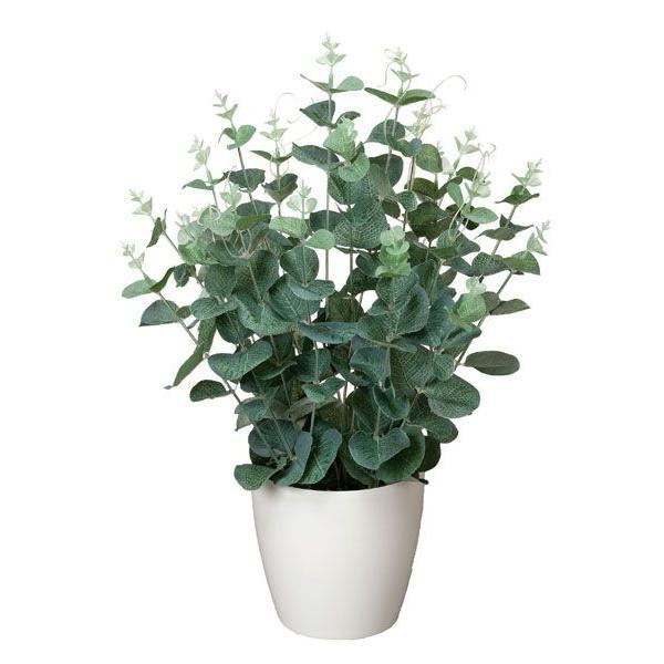 人工観葉植物(光触媒加工)光の楽園 ユーカリ