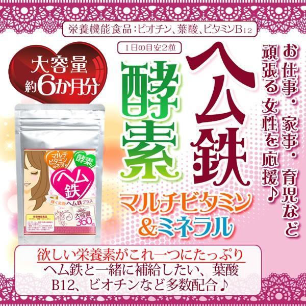 輝く笑顔 ヘム鉄プラス 栄養機能食品(ビオチン、葉酸、ビタミンB12 ...