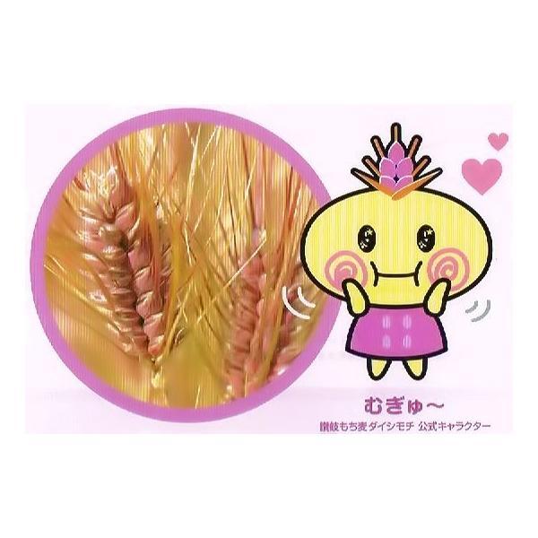 うどん県のダイシモチ(讃岐もち麦)10キロ大袋 (モチモチ美味しくて食物繊維がたっぷりです) morie 03