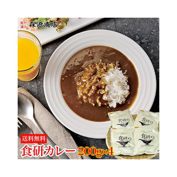 食研カレー200g×4袋メール便中辛常温便業務用日本食研ネコポス代引不可着日指定不可母の日父の日