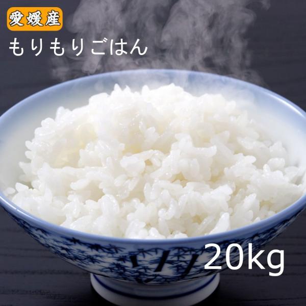 米 愛媛県産もりもりごはん20kg(10kg×2)|morikawa-yshop
