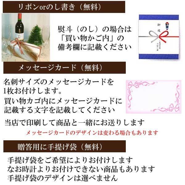 オリエントNeo70's PANDA パンダ メンズ 腕時計 男性用 ウオッチ ORIENT 時計  WV0021UZ  名入れ刻印対応、有料 取り寄せ品 morimototokeiten 06