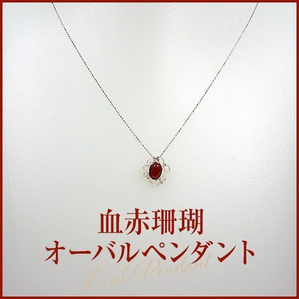 血赤珊瑚ペンダント  (ジュエリーボックス入り) 品番PN1302  日本サンゴセンター 珊瑚 さんご サンゴ sango coral 高知 産地直送