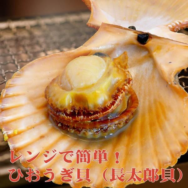 ひおうぎ貝 (長太郎貝) 10個セット 冷凍便