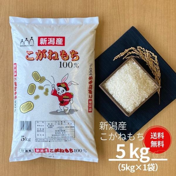 もち米 5kg 新潟県産 こがねもち 本州送料無料 令和2年産 お米