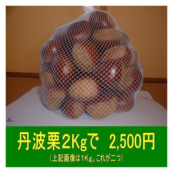 丹波栗 生栗 中粒に大粒が混合2Kg  入金確認後、二日以内に発送