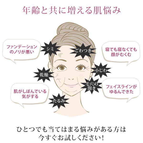 ポイント5倍 美顔器 超音波美顔器 EBiS売上No.1 ツインエレナイザープレミアム PREMIUM 日本製 毛穴 美顔機 RF 高周波 ラジオ波 イオン導入器 毛穴ケア|motebeauty|05