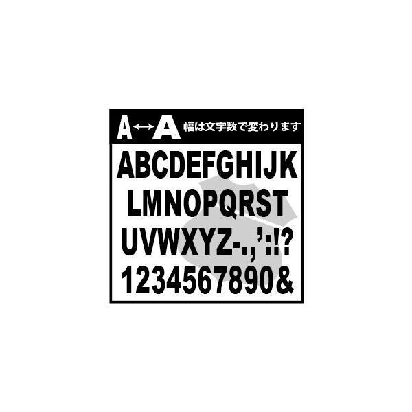 切り文字ステッカー  色&英数字・変更OK    TYPE - ROUTE 66  M/15cm   カッティングシート・シール・デカール|motologo|02