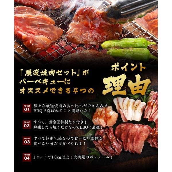 焼肉 BBQ セット 2019 黄金屋「厳選焼肉」6種食べ比べセット 送料無料  お酒 お供 焼肉 牛タン ハラミ 焼肉 motunabe 05
